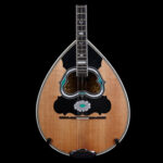 black-walnut-w-green-on-the-soundhole-270